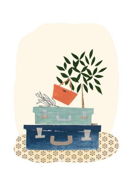 Travelling Light - Luggage - Plant - Bay Tree