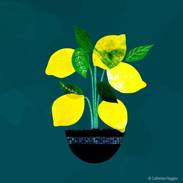 CH---Lemon-Tree-Illustration