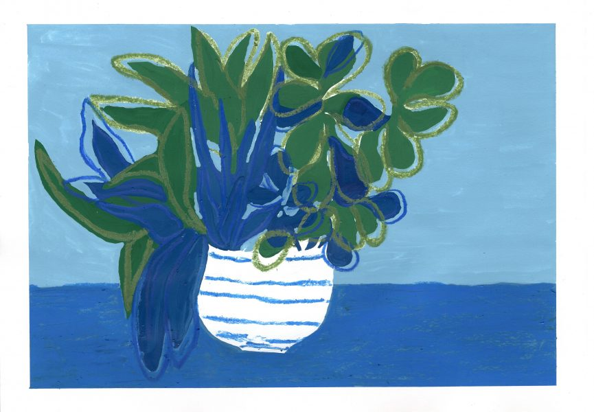 Cactai Plant in Striped Pot copy