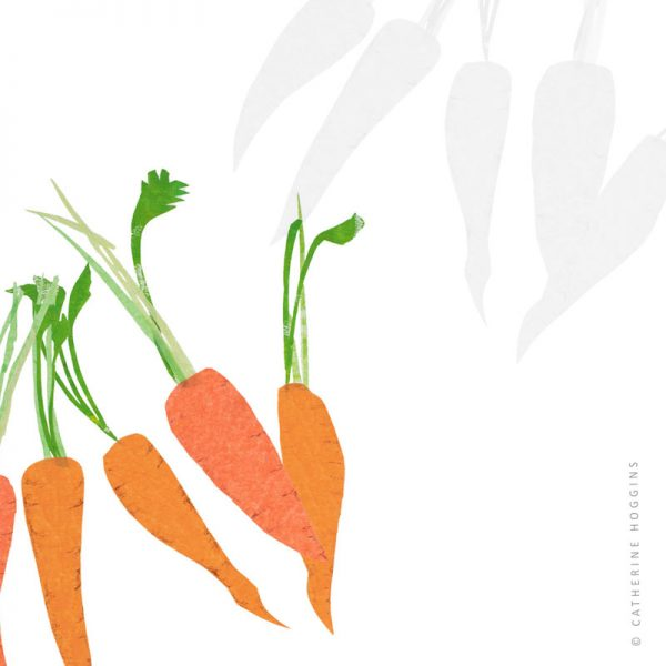 Catherine-Hoggins---Food-illustration---Carrots-1126