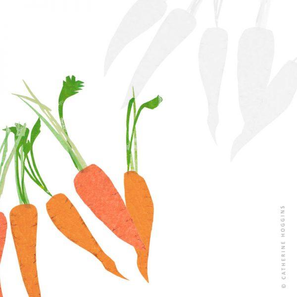 Catherine-Hoggins---Food-illustration---Carrots-1126