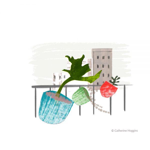 Urban-Gardening---pots-blowing-away-19-02-2020