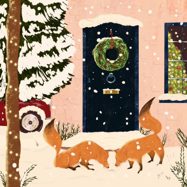 Foxes in the snow