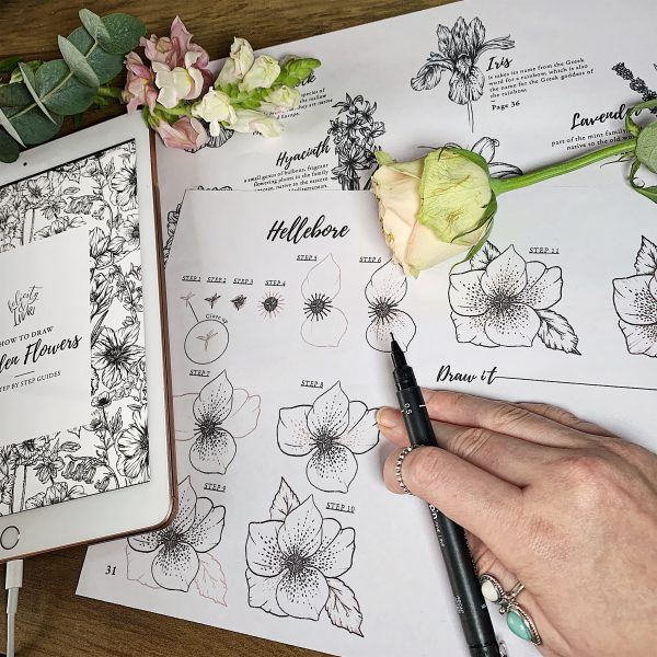 Felicity and Ink_How To Draw Garden Flowers Workbook 2