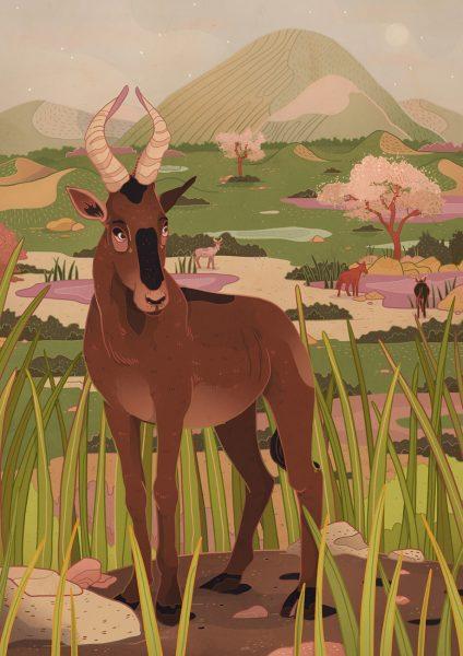The Swayne's Hartebeest