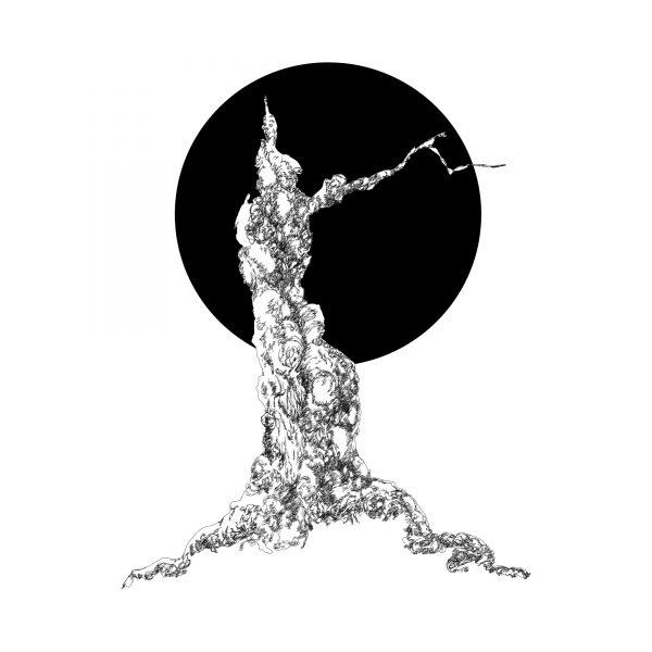 1.Moonlight Tree
