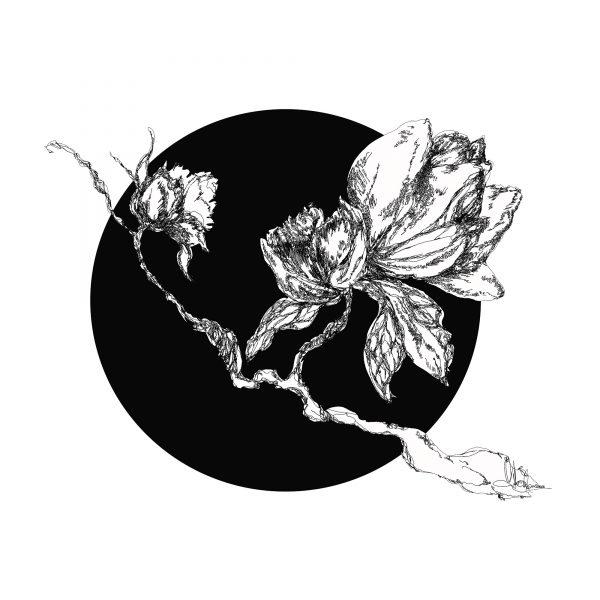 2.Blossom-Harmony