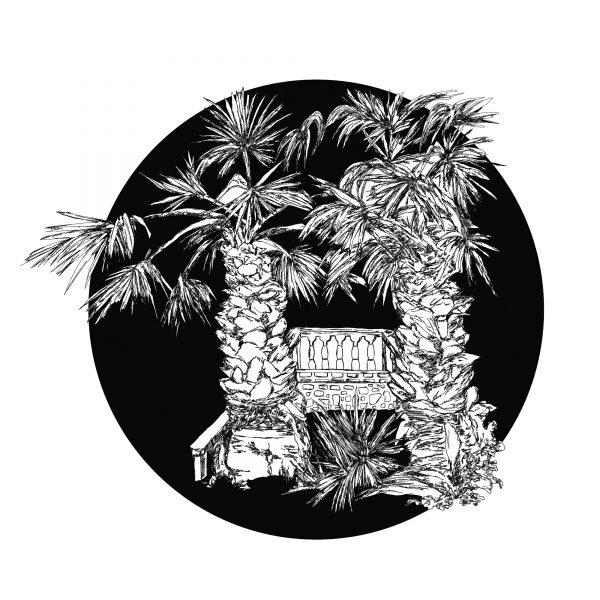 6.Palm Tree