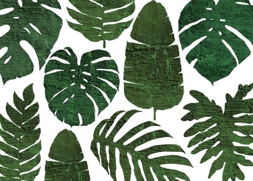 Botanicals book cover 3