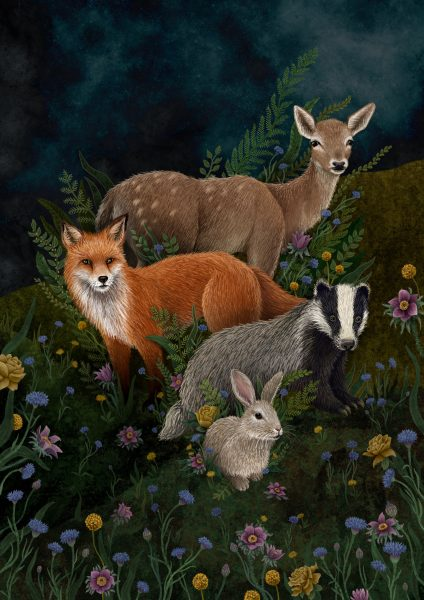 Woodland Flora and Fauna