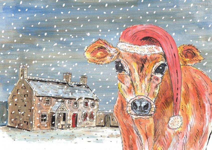 Hamptonne Cow Christmas Card