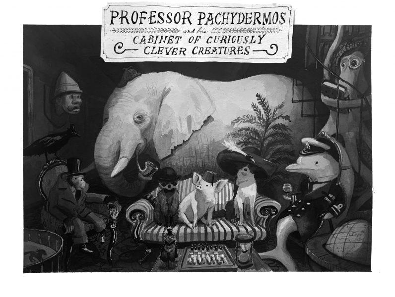 PROFESSOR PACHYDERMOS