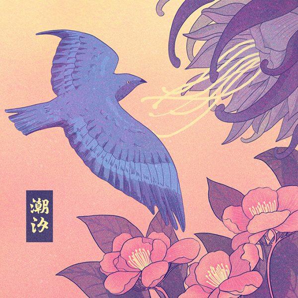 TIDE_Bird.jpg