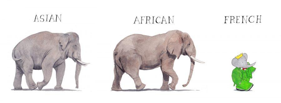 Kinds of Elephants
