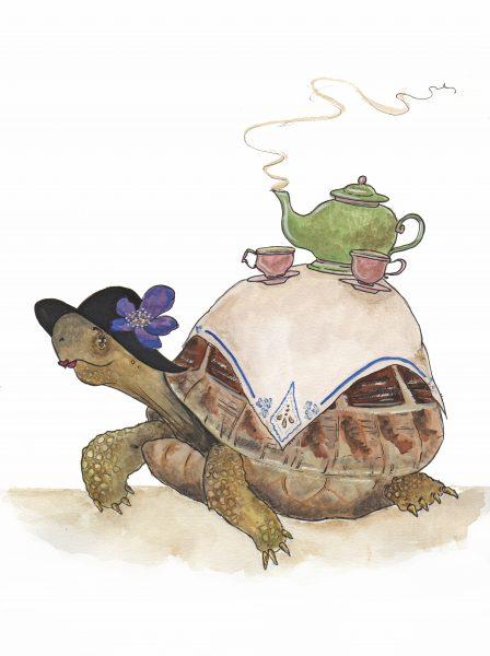 Tea Table Tortoise