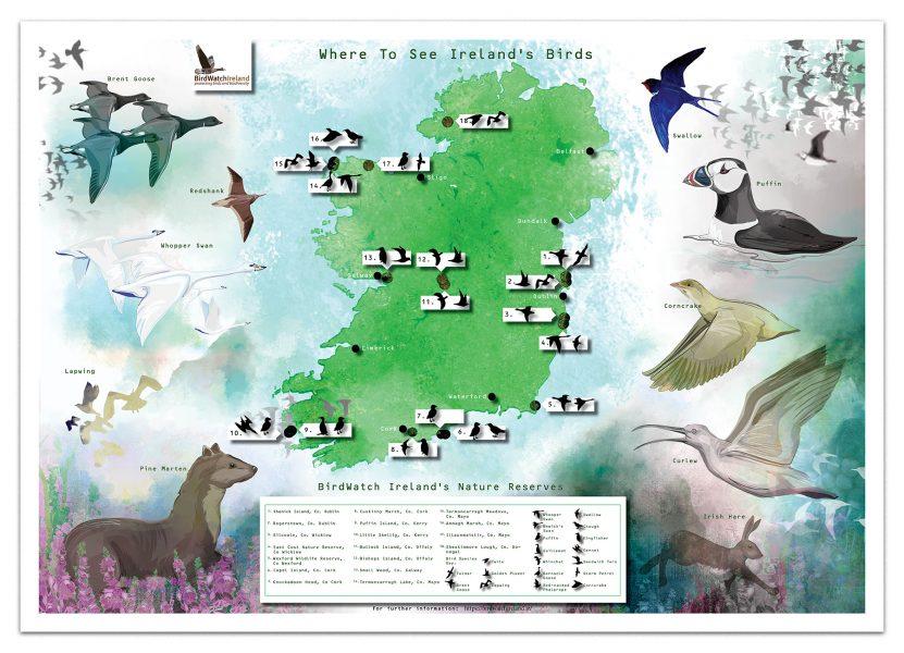 Bird Watch Ireland Map