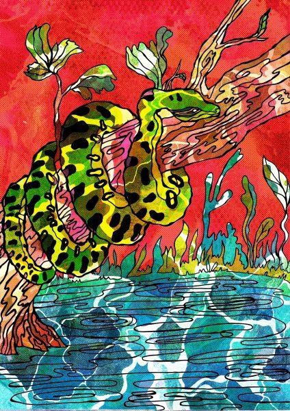 Ana the Anaconda