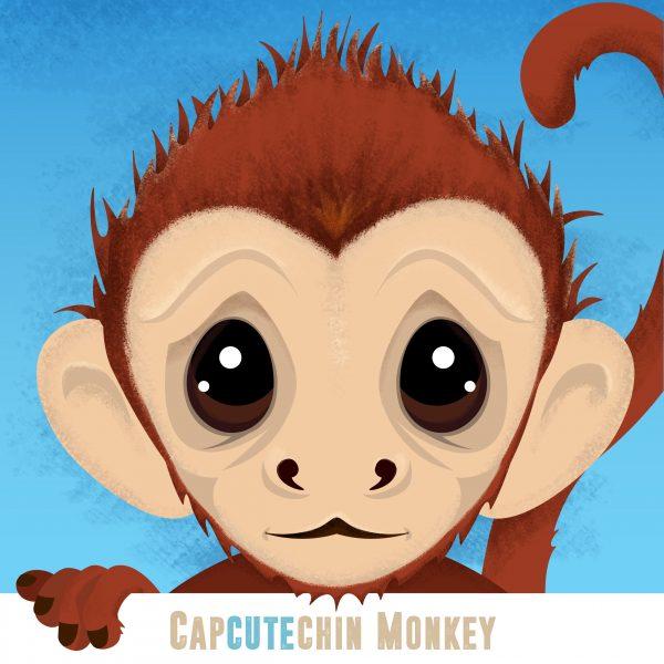 Cute Capuchin