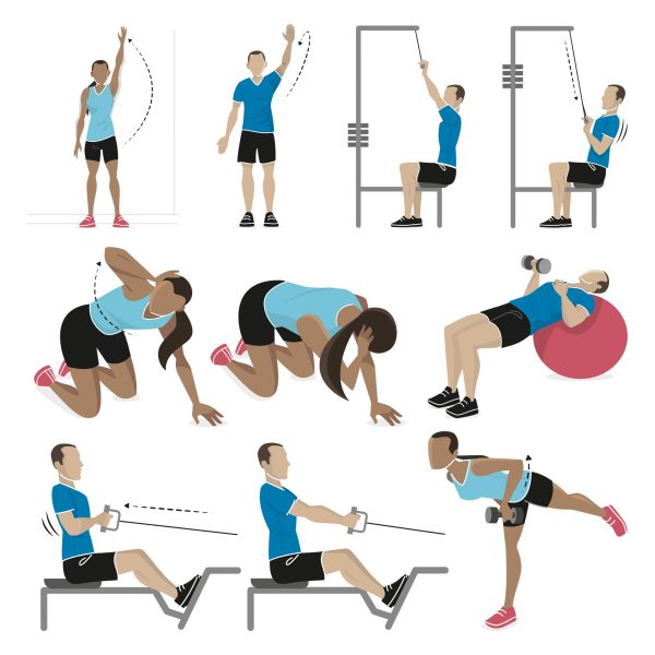 Velopress Exercise Illustrations