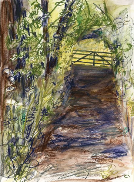 Tansley Wood - Matlock