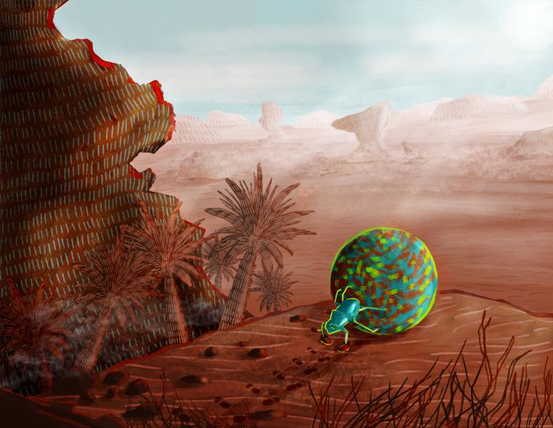 trekking a desert