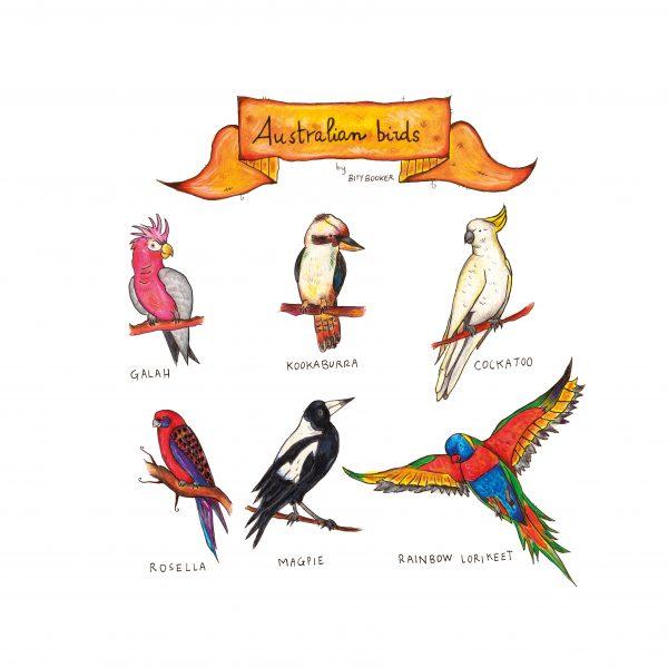 'Australian Birds'