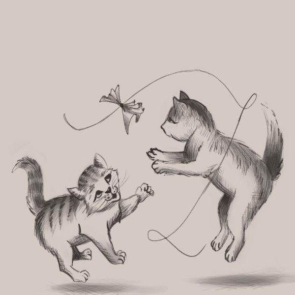Catplay-Doodle-2019