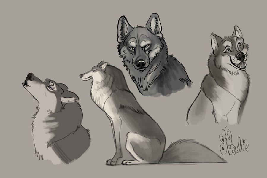 Wolf Characters 071020