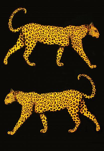 Leopard Risograph
