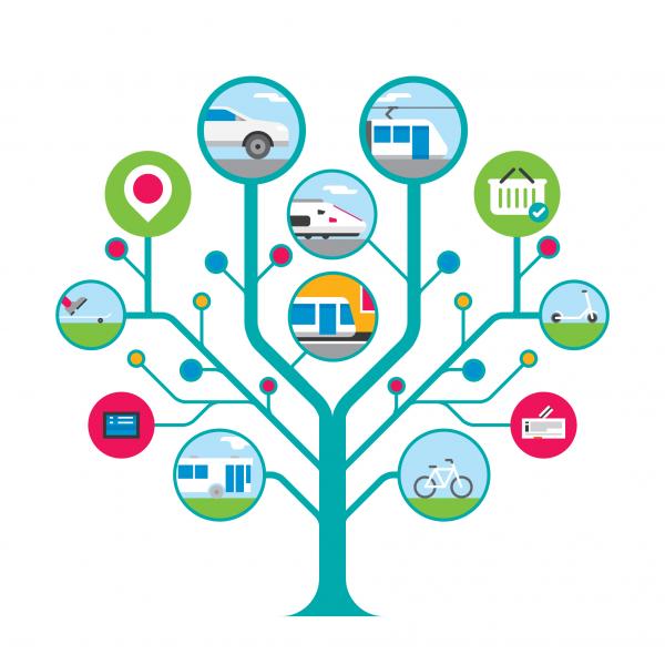Transport tree