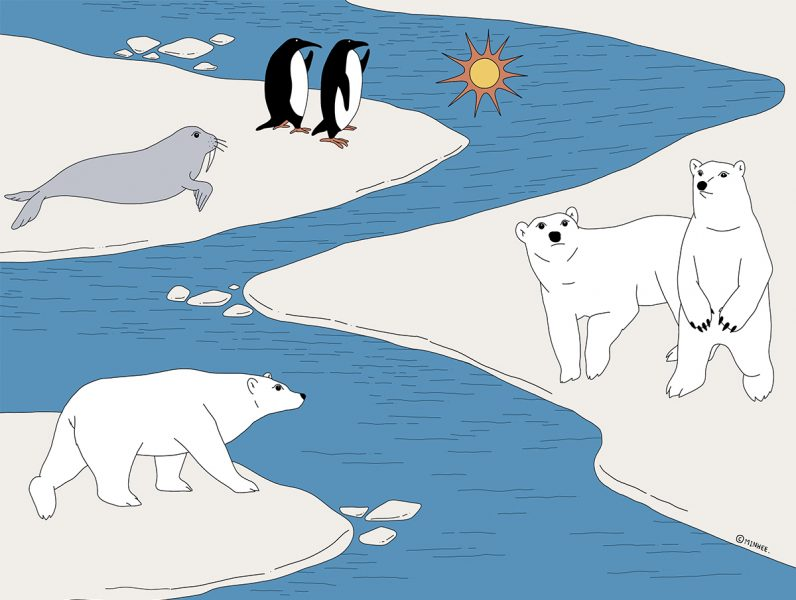 The Arctic Neighbours