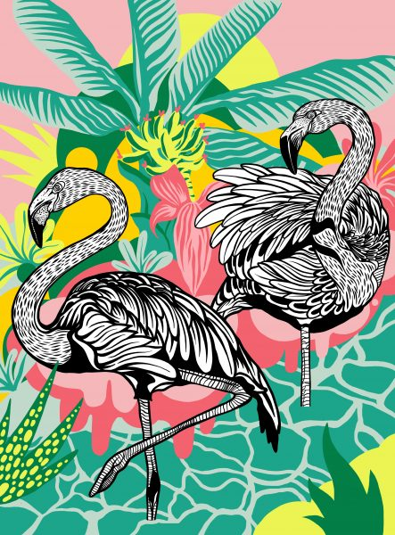 Flamingos 1 final