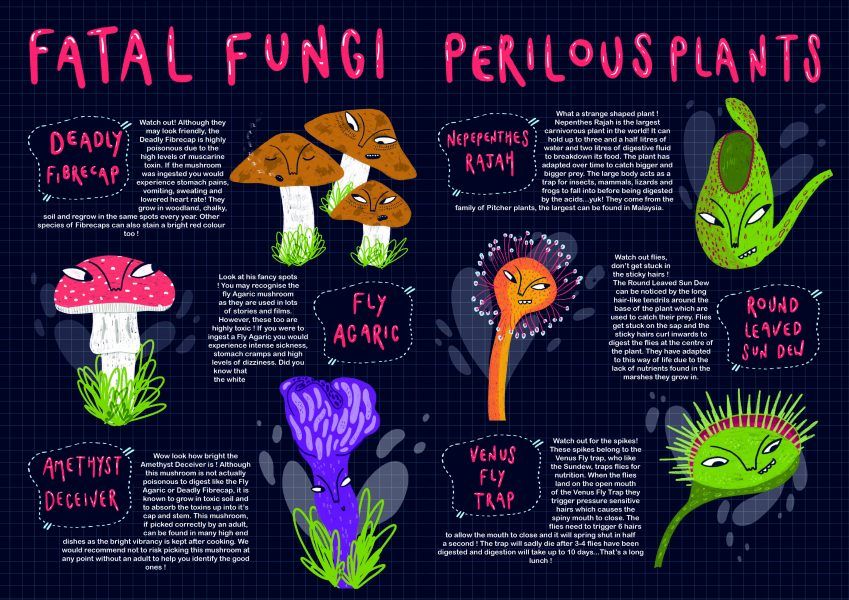 The Poisonous Garden Infographic