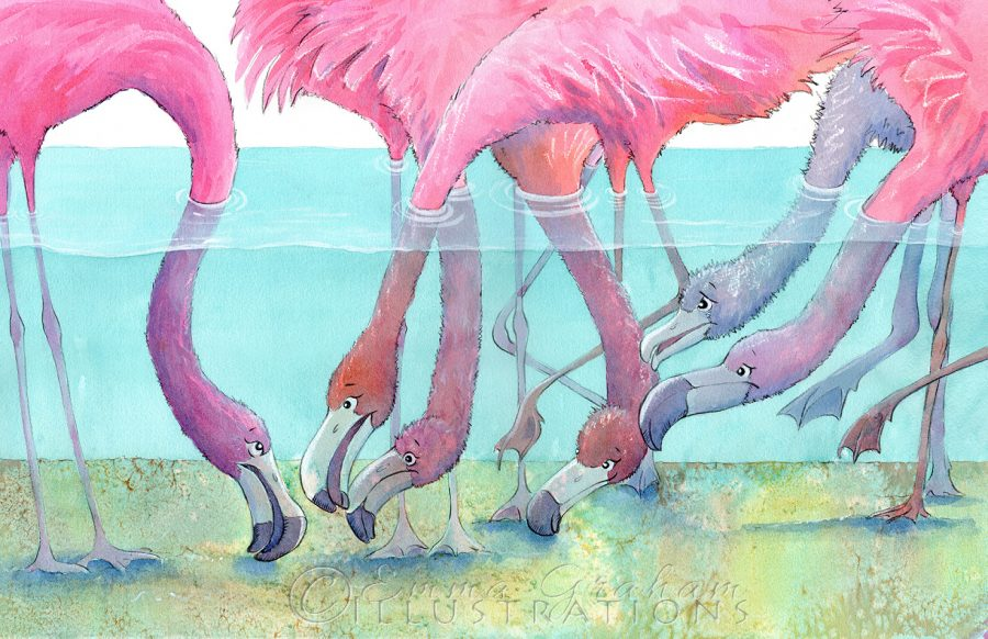 flamingo chat - emma graham