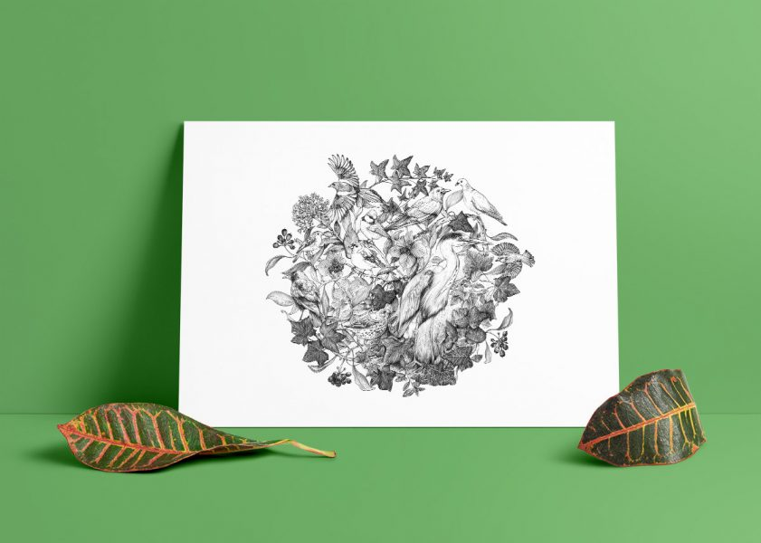 Birds-of-Grange-Rd-area_w1200px_for-shop-mockup_green2