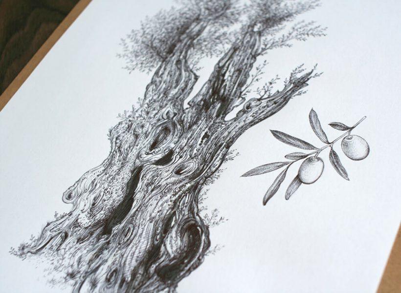 Olive-tree_original-artwork-by-Aga-Grandowicz