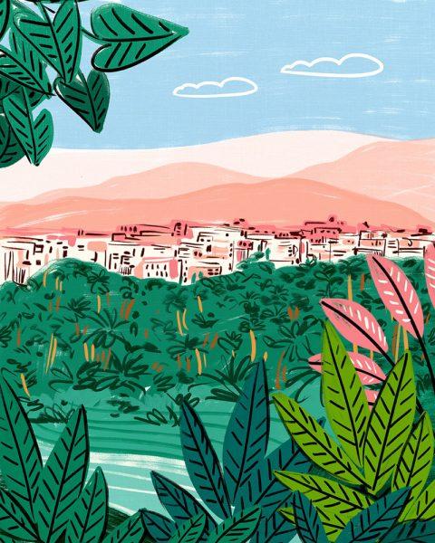 found_visbii_morocco