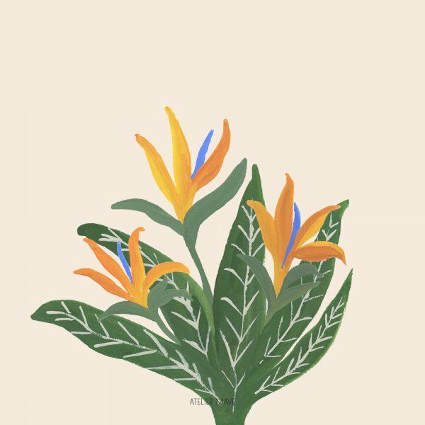 notususedflorals