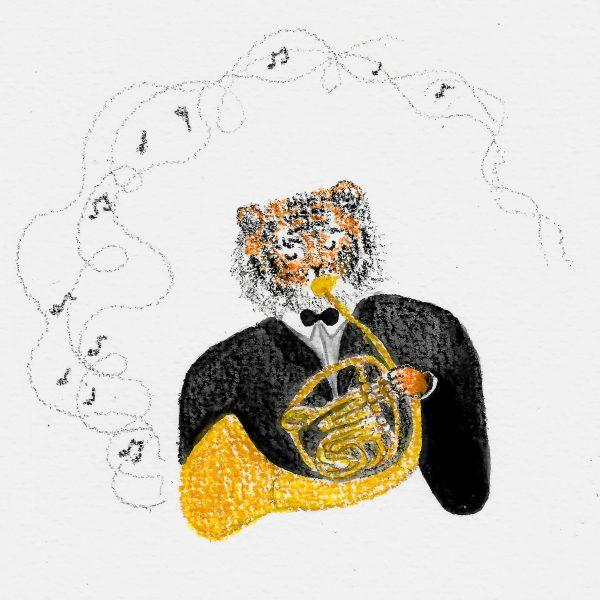 Classical tiger