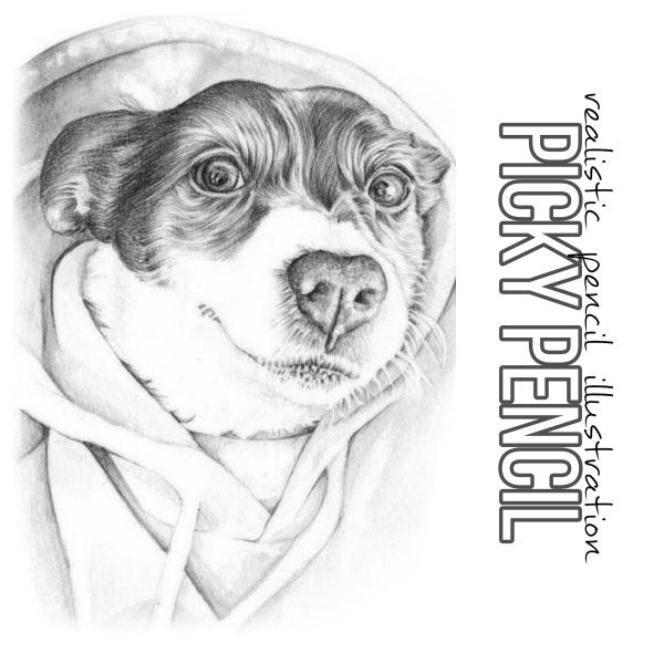 Jack Russell in a jumper black adn white line animal illustration