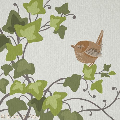 paper wren