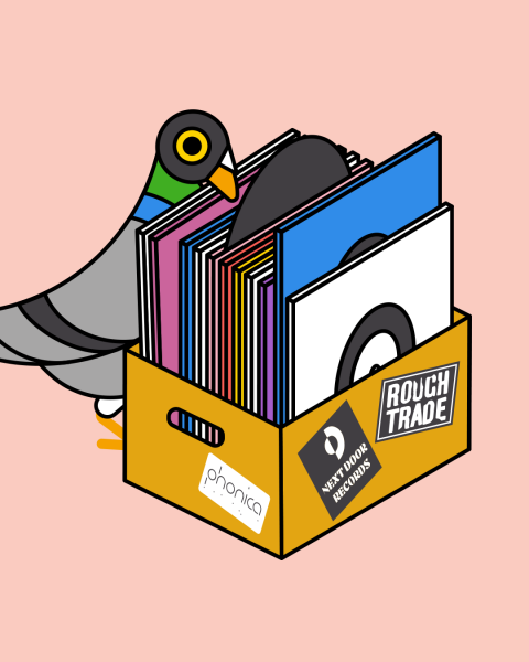 Pigeon shopping for records