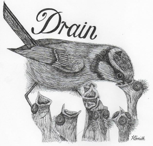 Inktober drawing - The draining task of bird motherhood