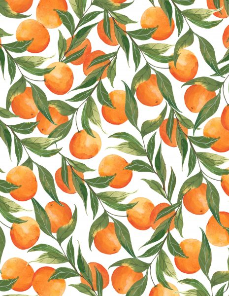 Illustrated Clementine Patterrn
