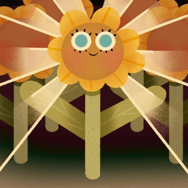 Sunflower