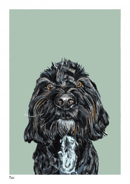 Mac Pet Portrait