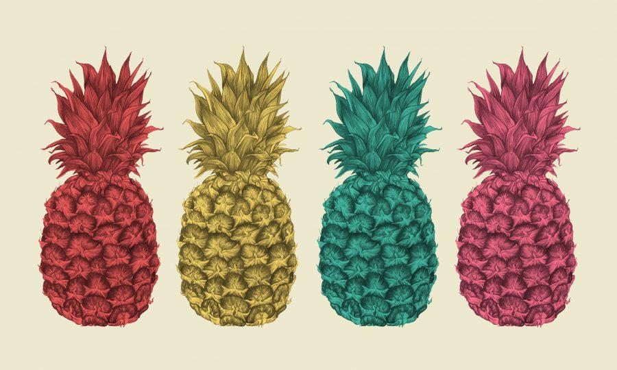 Pineapple Cushion Design