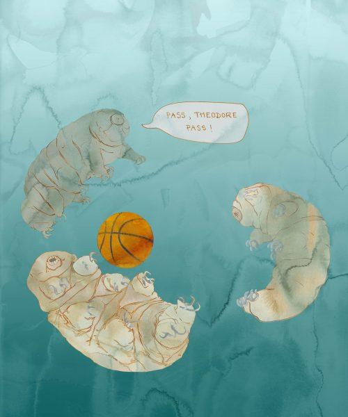 Tardigrade Basketball