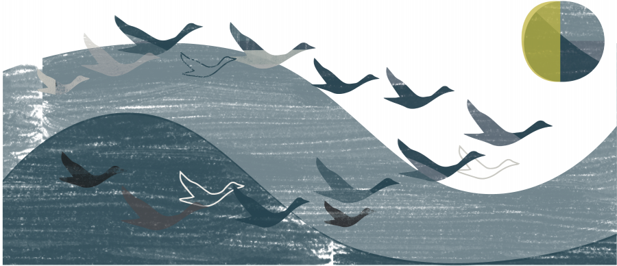 It Takes a Flock to Fly