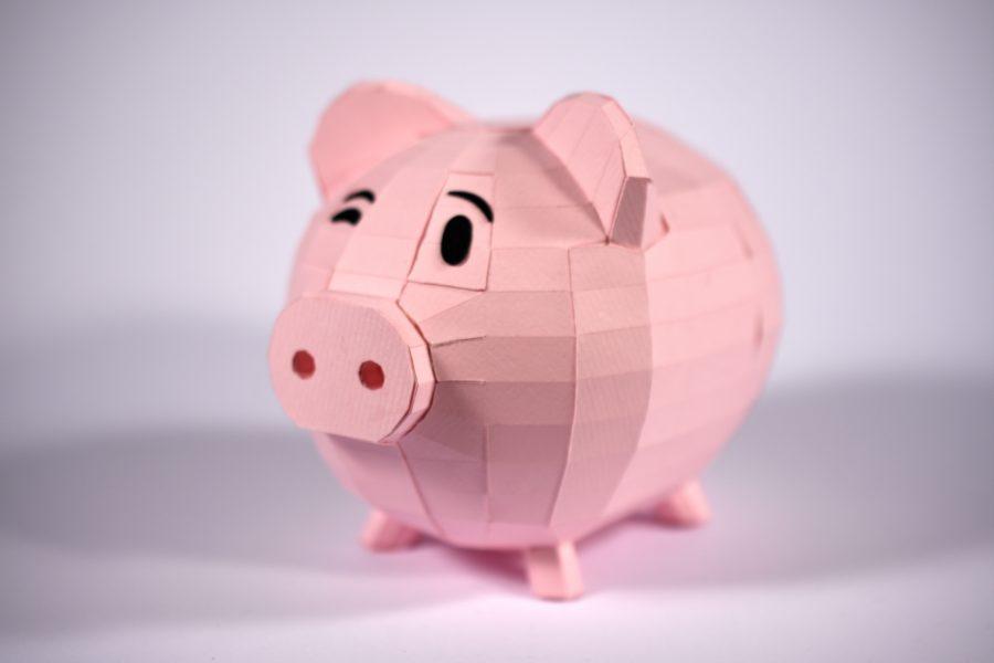 19_Paper Pig
